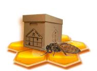Заказ маток и пчелопакетов